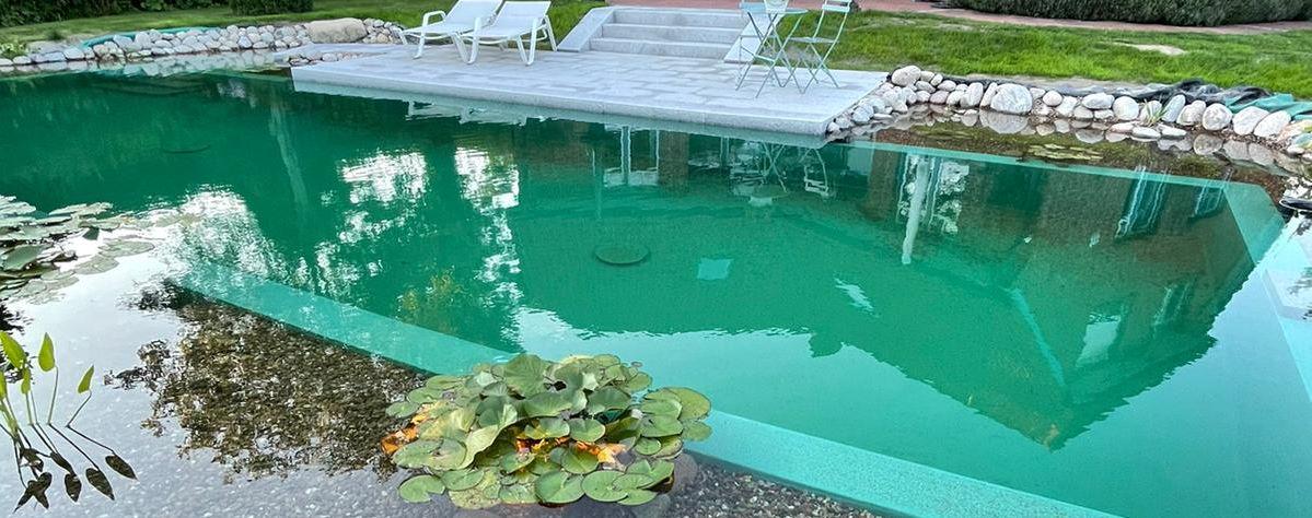 Schwimmteich 1